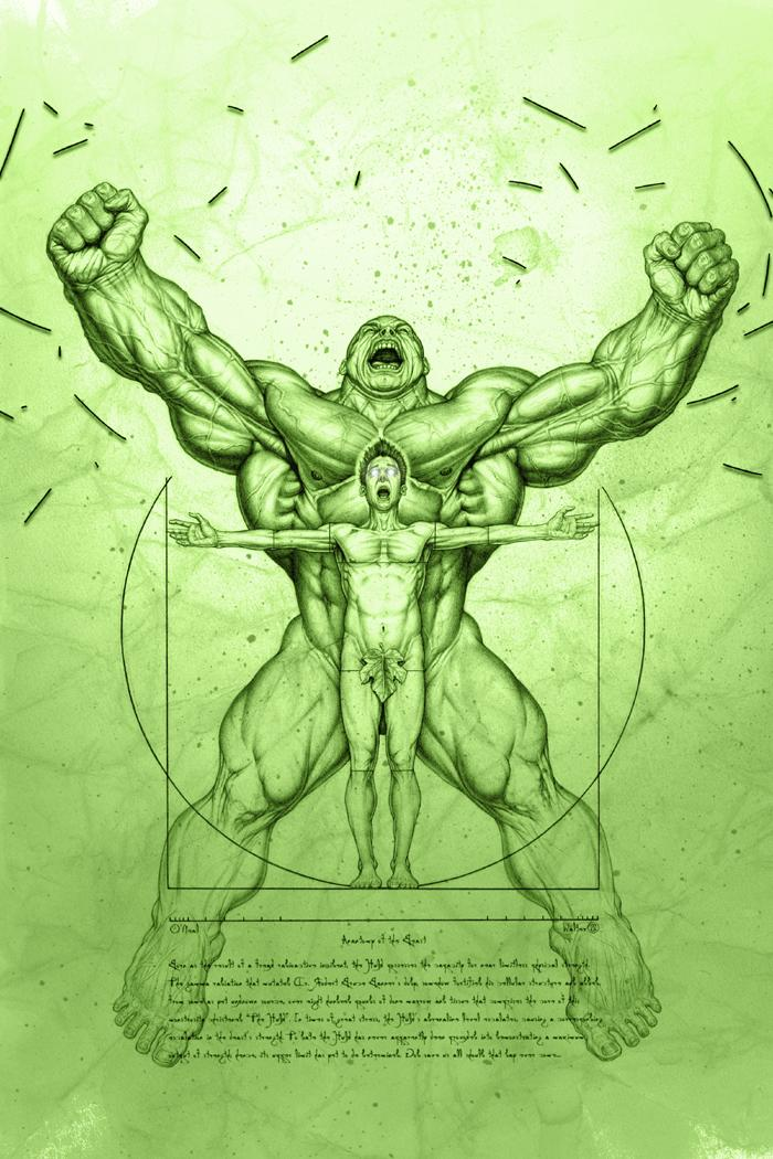 Geek Art: Anatomy of the Hulk - News - GeekTyrant