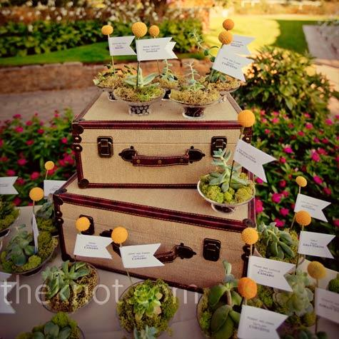 Real Weddings - A Rustic Vintage Wedding in Rochester, MI - Potted Succulent Favors