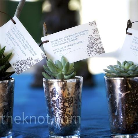 Real Weddings - An Outdoor Wedding in Hunt, TX - Small Plant Favors
