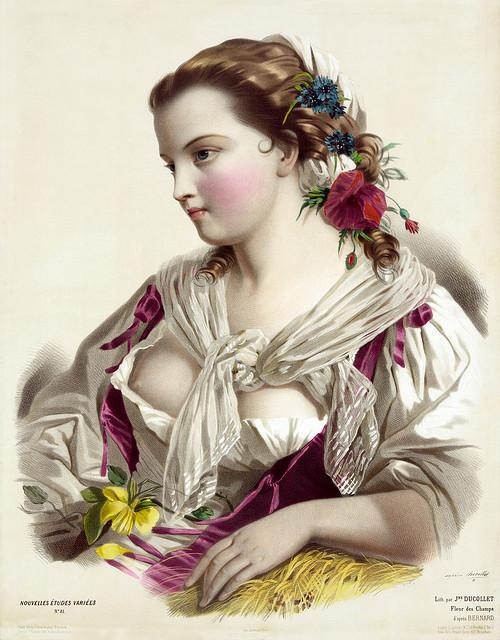 Joséphine Ducollet: Fleur des champs, after Bernard, ca. 1856 | Flickr - Photo Sharing!