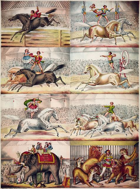 Scenes in the arena, 1874   Flickr - Photo Sharing!
