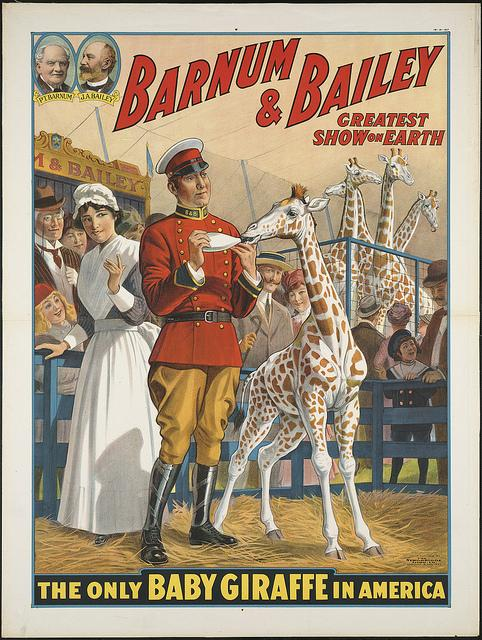Barnum & Bailey greatest show on earth : The only baby giraffe in America | Flickr - Photo Sharing!