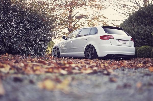 cars,autumn autumn cars belgium tuning audi a3 4288x2848 wallpaper – Audi Wallpaper – Free Desktop Wallpaper