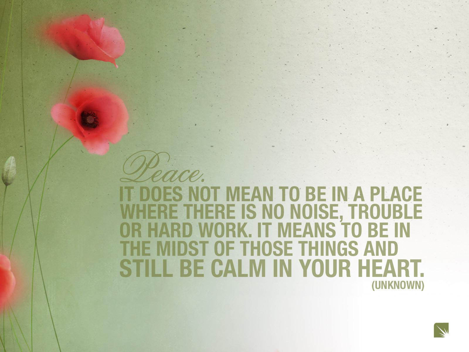 flowers quotes peace poppy - Wallpaper (#285602) / Wallbase.cc