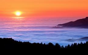 Sea of Fog - Toevoegen aan uw startpagina