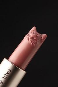 lip stick - StyleCraze