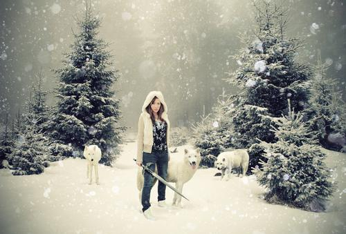 girl, snow, sword, winter, wolf - inspiring picture on Favim.com