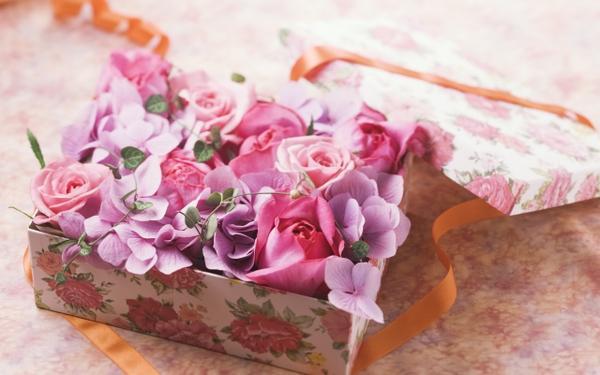 pink,roses pink roses 2560x1600 wallpaper – pink,roses pink roses 2560x1600 wallpaper – Pink Wallpaper – Desktop Wallpaper