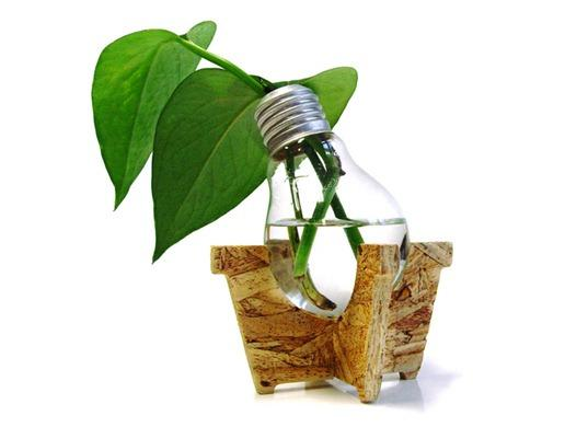 Google Image Result for http://www.peelscrapmetalrecycling.com/blog/wp-content/uploads/2011/01/Green-Idea-Bulb51.jpg