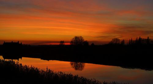 Sunset_tree_reflections_746.jpg (500×275)