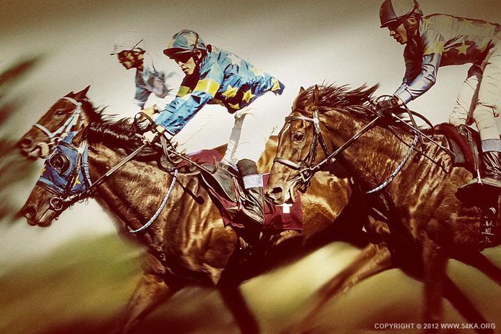 Horse Racing II - 54ka [photo blog]