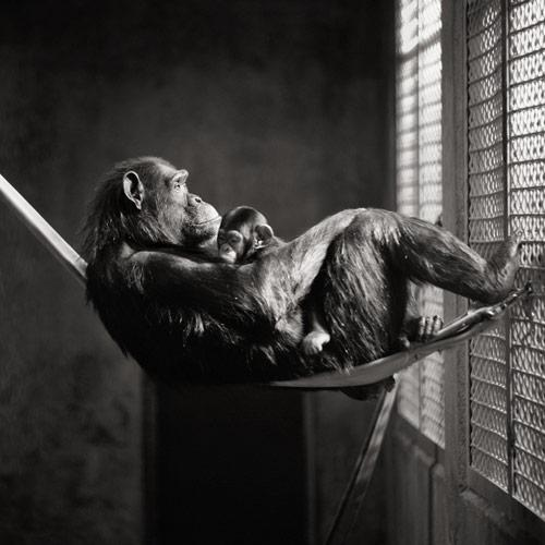 Black and White Photography - Expressive Photos by Brian Day