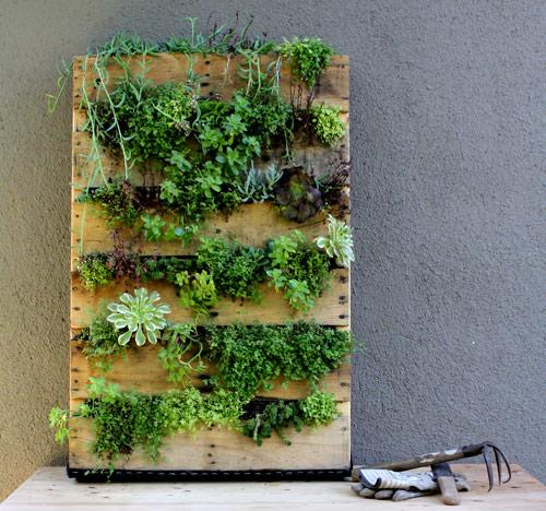 diy project: recycled pallet vertical garden | Design*Sponge