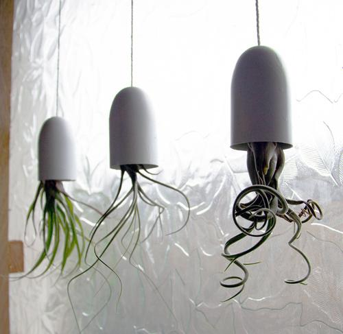 diy project: hanging air plant containers | Design*Sponge