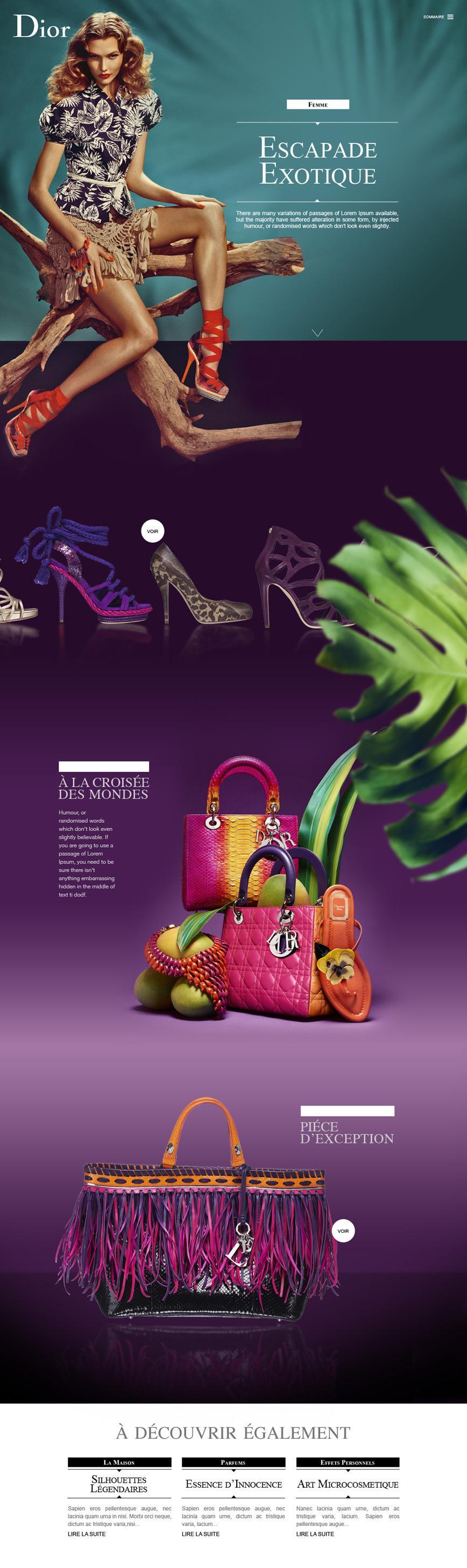 Direction Artistique Web pour Dior via Mazarine Digitale en Freelance > Creasenso