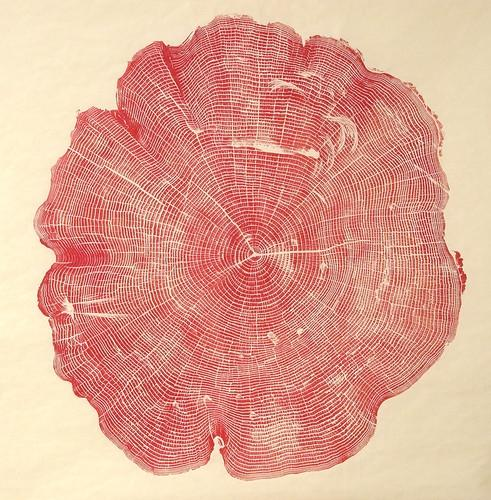 Designspiration — 1 | Beautiful Photos Of Tree Rings Remind Us To Slow Down A Little | Co.Exist: World changing ideas and innovation
