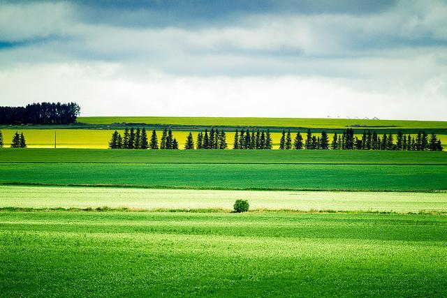 Landscape Photography by Jesse Yardley | Professional Photography Blog