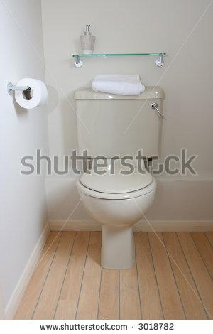 Toilet Interior Stock Photo 3018782 : Shutterstock