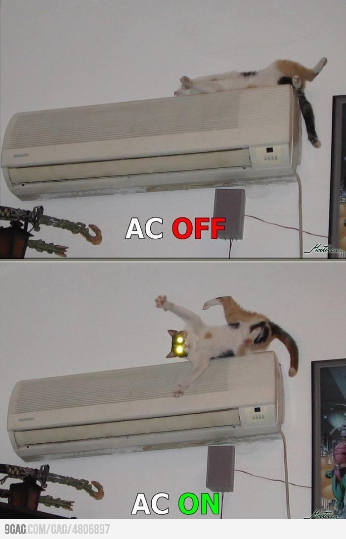 9GAG - My cat has never slept on the air conditioner again...