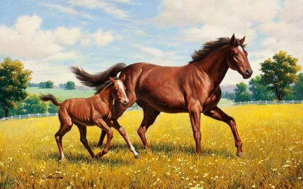 nature,paintings paintings nature multicolor flowers animals garden horses artwork running 2560x1600 wallpaper – Horses Wallpapers – Free Desktop Wallpapers