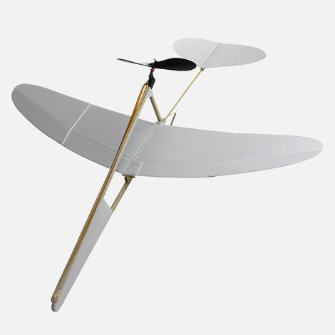 The Crow model airplane | iainclaridge.net