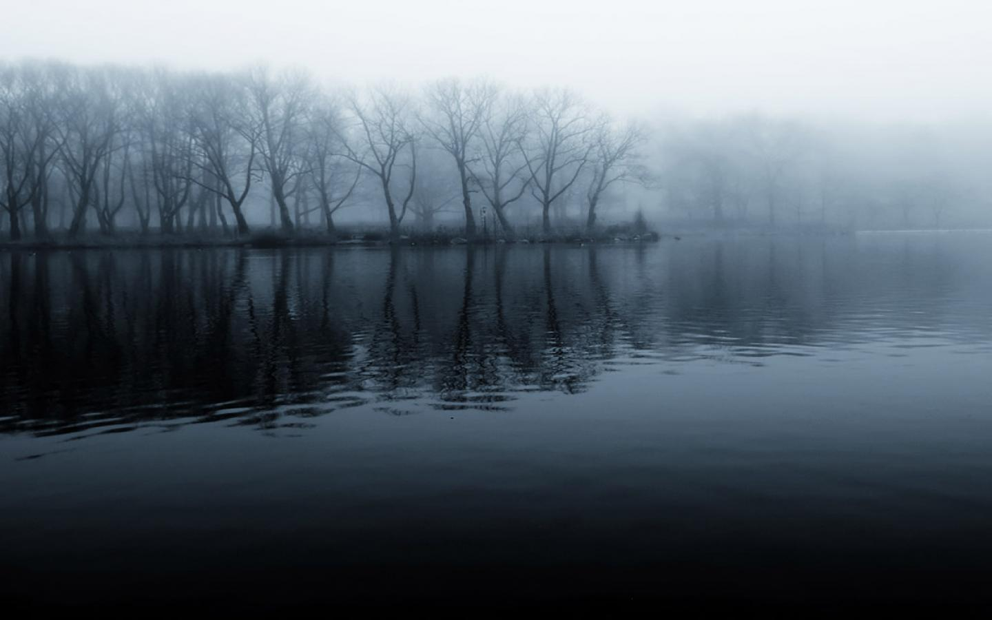 Free Download HD Foggy Morning in lake 1024x768 - Download FREE Widescreen HD Foggy Morning in lake