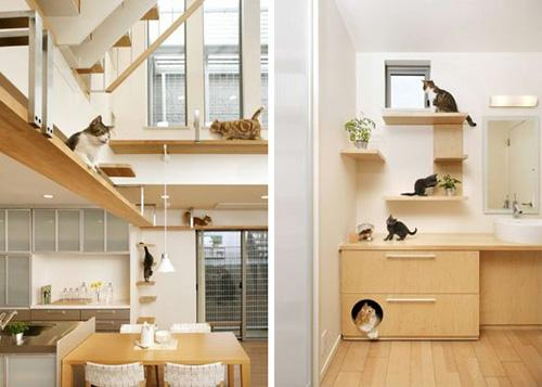 Unbelievable Cat-friendly House Design from Japan | moderncat :: cat products, cat toys, cat furniture, and more…all with modern style
