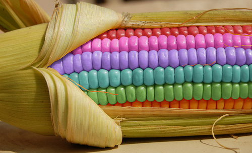 Rainbow Corn – Yum! | Hawaii Kawaii Blog