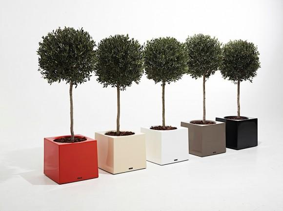 Flower Pot Alea by Extremis - Furniture - Shop: MINIM - interior design studio and furniture store in Barcelona