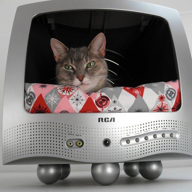 Fancy - TV Cat Bed