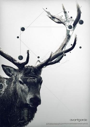 Graphic Design / AvantGarde