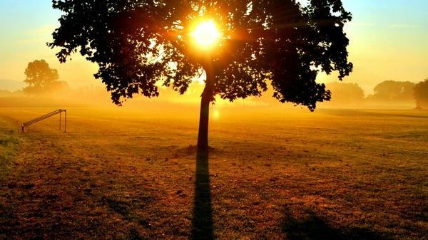 nature,sunrise sunrise nature sun trees fields fog mist 1920x1080 wallpaper – Fields Wallpapers – Free Desktop Wallpapers