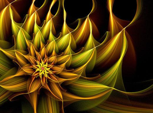 35 Beautiful Examples of Fractal Flowers - Noupe