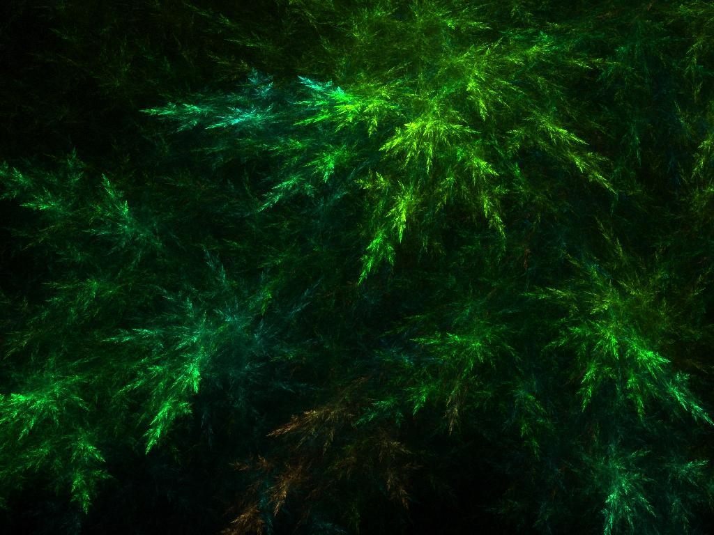 Resultados da Pesquisa de imagens do Google para http://fractalforest.files.wordpress.com/2008/05/elements-earth.jpg