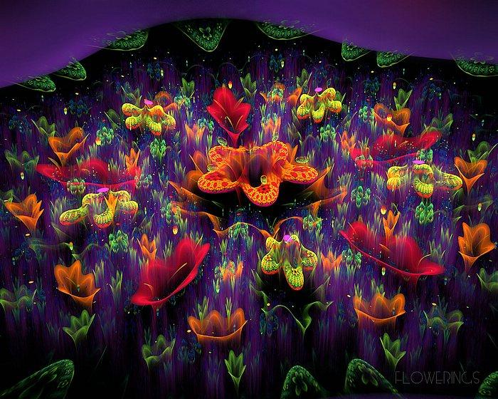 Fractal Flower Garden - Stunning Floral Fractal Art Wallpapers 6 - Wallcoo.net