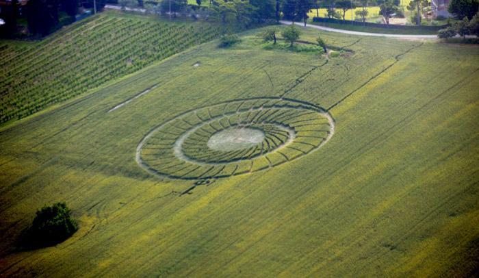 Crop Circle at Bracciano, Bertinoro. . Reported 20th May 2012