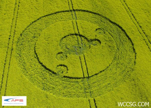 Crop Circle at Uffington White Horse, nr Woolstone. Oxfordshire. Reported 19th May  2012.