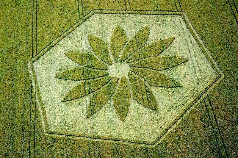 Crop Circle at Juggler's Lane, nr Yatesbury, Wiltshire. Reported 17th July 2012.