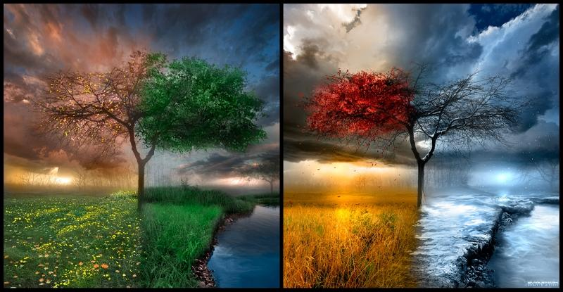 nature,clouds clouds nature winter trees autumn artistic seasons summer spring rivers 1600x831 wallpaper – nature,clouds clouds nature winter trees autumn artistic seasons summer spring rivers 1600x831 wallpaper – Clouds Wallpaper – Desktop Wallpaper