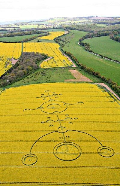 2012 - O Portal: Crop Circles