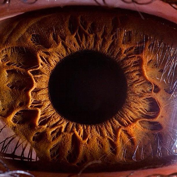 SnapWidget | Eyeballin '