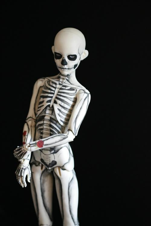 The Beauty of Life, Death, and Rebirth / skeleton bjd