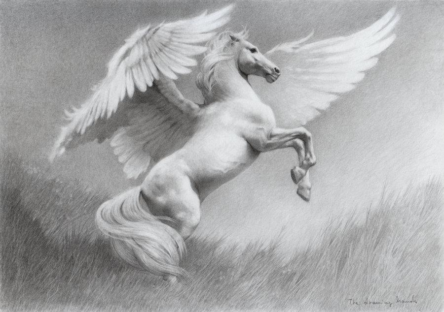 Pegasus by ~thedrawinghands