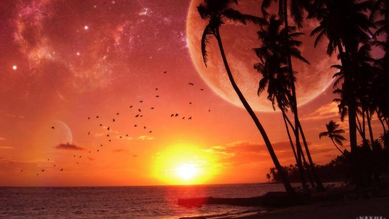 Oceansunset Sunset Ocean Beach Moon Palm Trees 1920x1080 Wallpaper