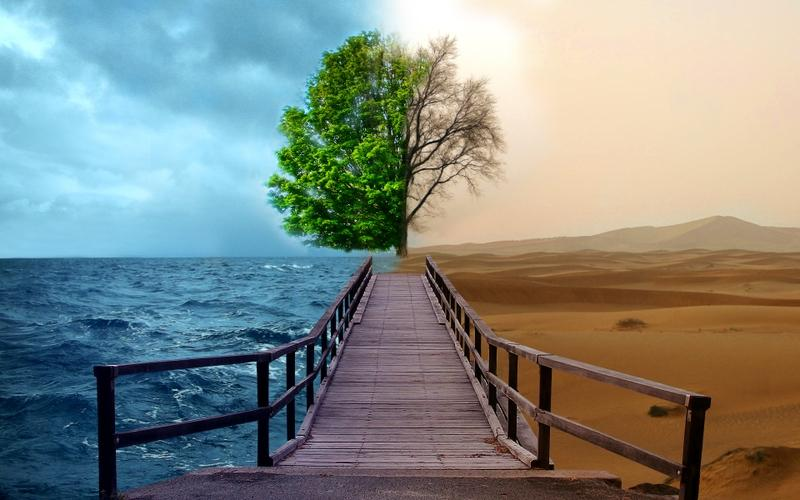 ocean,trees ocean trees desert bridges opposing force good vs evil opposite 1920x1200 wallpaper – ocean,trees ocean trees desert bridges opposing force good vs evil opposite 1920x1200 wallpaper – Desert Wallpaper – Desktop Wallpaper