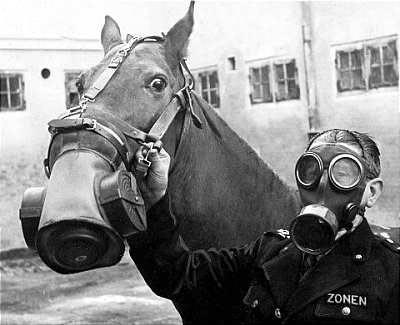 Horse%2Bgas%2Bmask%2Bwar.jpg (400×325)