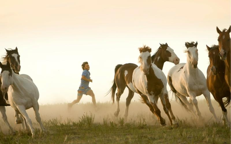 movies,horses movies horses into the wild 1920x1200 wallpaper – movies,horses movies horses into the wild 1920x1200 wallpaper – Horses Wallpaper – Desktop Wallpaper