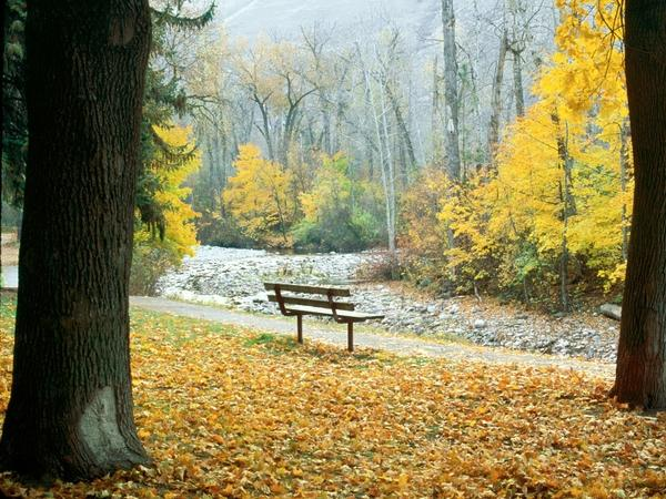 leaves,autumn (season) autumn season leaves bench park bench parks fallen leaves 1600x1200 wallpaper – Autumn Wallpapers – Free Desktop Wallpapers