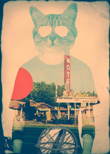 Cool Cat Art Print by Ali GULEC | Society6