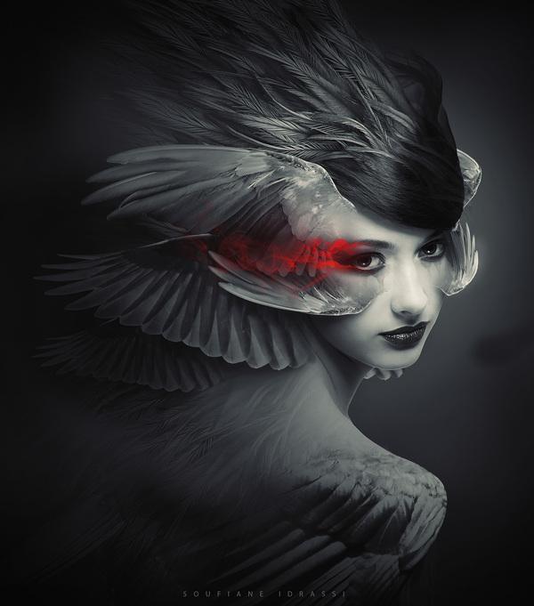 Winged Angel 3 sur le réseau
